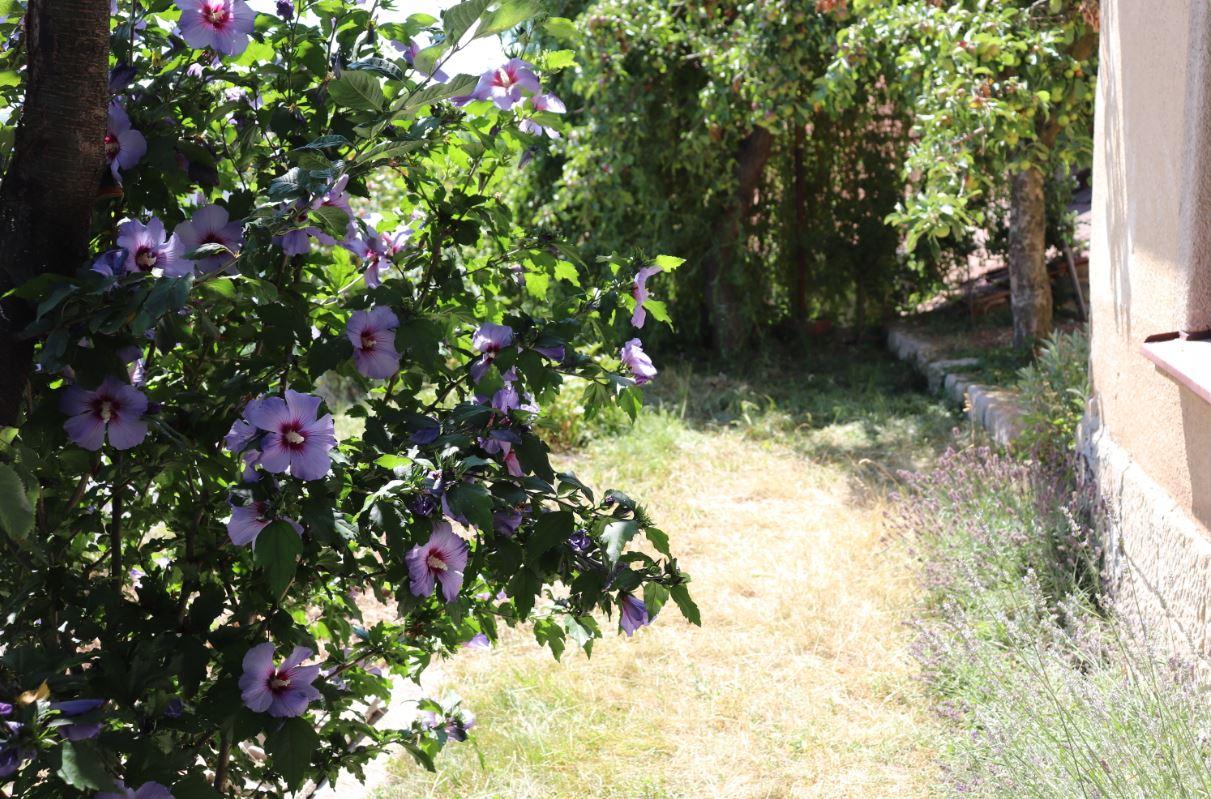 Dešťová zahrada Waldhauser